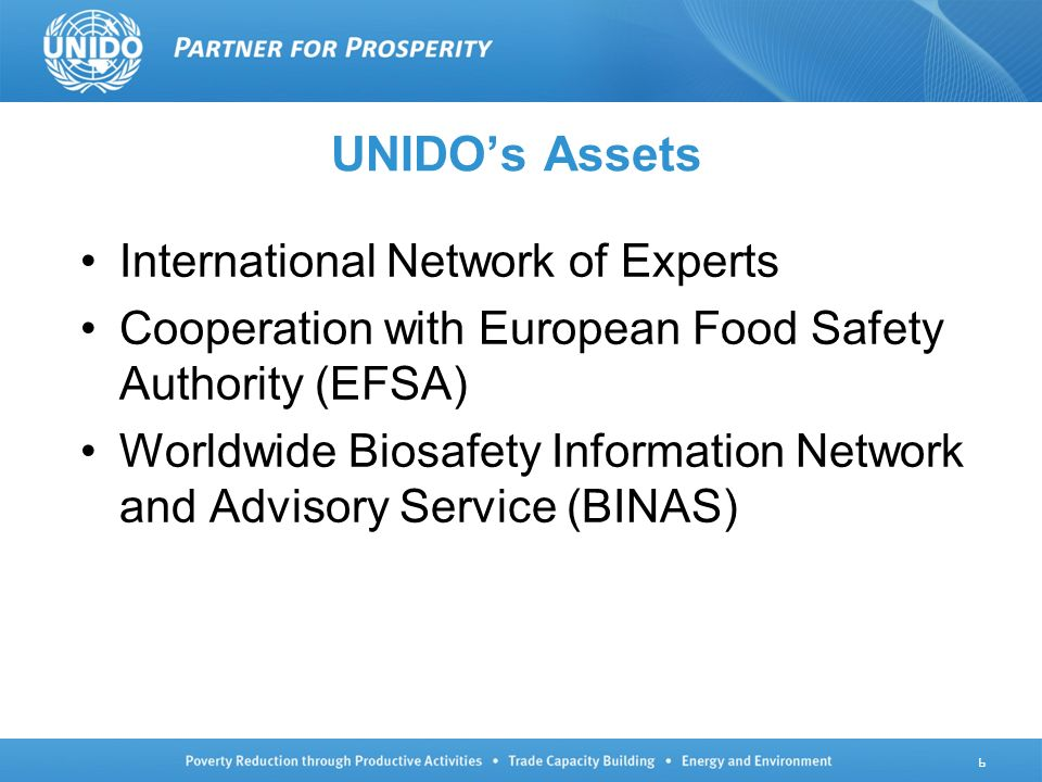 UNIDOs Assets International Network of Experts Cooperation with European Food Safety Authority (EFSA) Worldwide Biosafety Information Network and Advisory Service (BINAS) 6