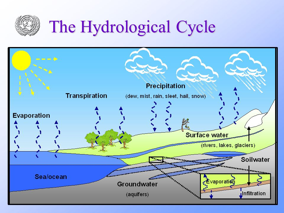 19 The Hydrological Cycle