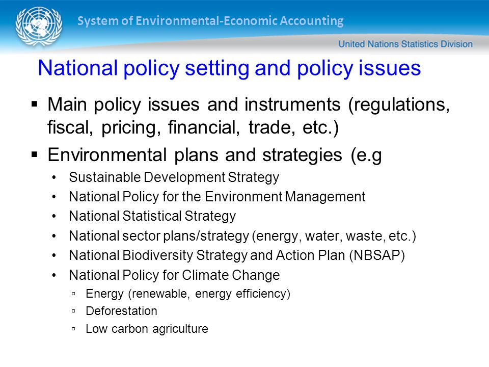 System of Environmental-Economic Accounting National policy setting and policy issues Main policy issues and instruments (regulations, fiscal, pricing, financial, trade, etc.) Environmental plans and strategies (e.g Sustainable Development Strategy National Policy for the Environment Management National Statistical Strategy National sector plans/strategy (energy, water, waste, etc.) National Biodiversity Strategy and Action Plan (NBSAP) National Policy for Climate Change Energy (renewable, energy efficiency) Deforestation Low carbon agriculture
