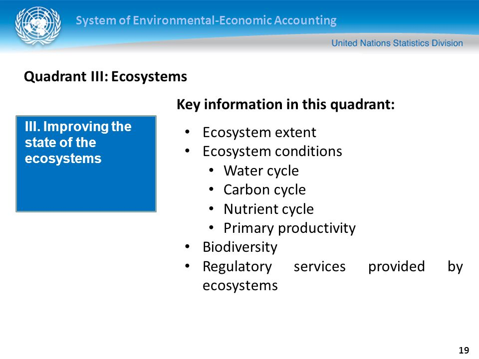 System of Environmental-Economic Accounting 19 Quadrant III: Ecosystems Ecosystem extent Ecosystem conditions Water cycle Carbon cycle Nutrient cycle