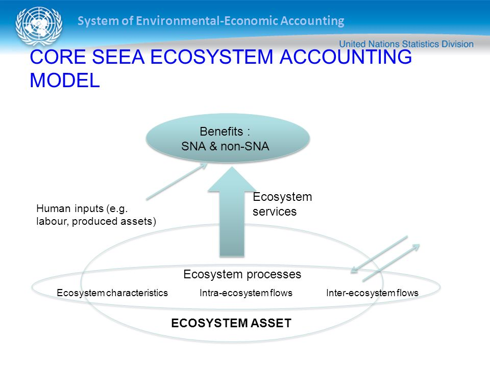 System of Environmental-Economic Accounting CORE SEEA ECOSYSTEM ACCOUNTING MODEL Benefits : SNA & non-SNA Ecosystem services ECOSYSTEM ASSET Ecosystem