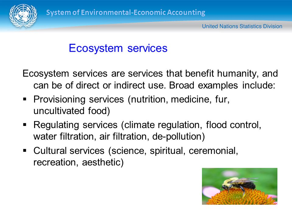 System of Environmental-Economic Accounting Ecosystem services Ecosystem services are services that benefit humanity, and can be of direct or indirect