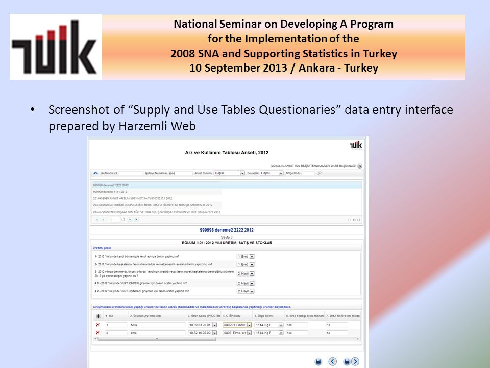 Screenshot of Supply and Use Tables Questionaries data entry interface prepared by Harzemli Web National Seminar on Developing A Program for the Imple
