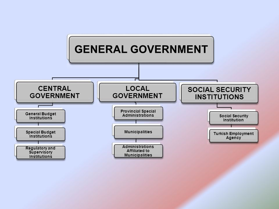 GENERAL GOVERNMENT CENTRAL GOVERNMENT General Budget Institutions Special Budget Institutions Regulatory and Supervisory Institutions LOCAL GOVERNMENT Provincial Special Administrations Municipalities Administrations Affiliated to Municipalities SOCIAL SECURITY INSTITUTIONS Social Security Institution Turkish Employment Agency