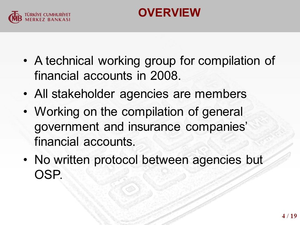 OVERVIEW A technical working group for compilation of financial accounts in 2008.