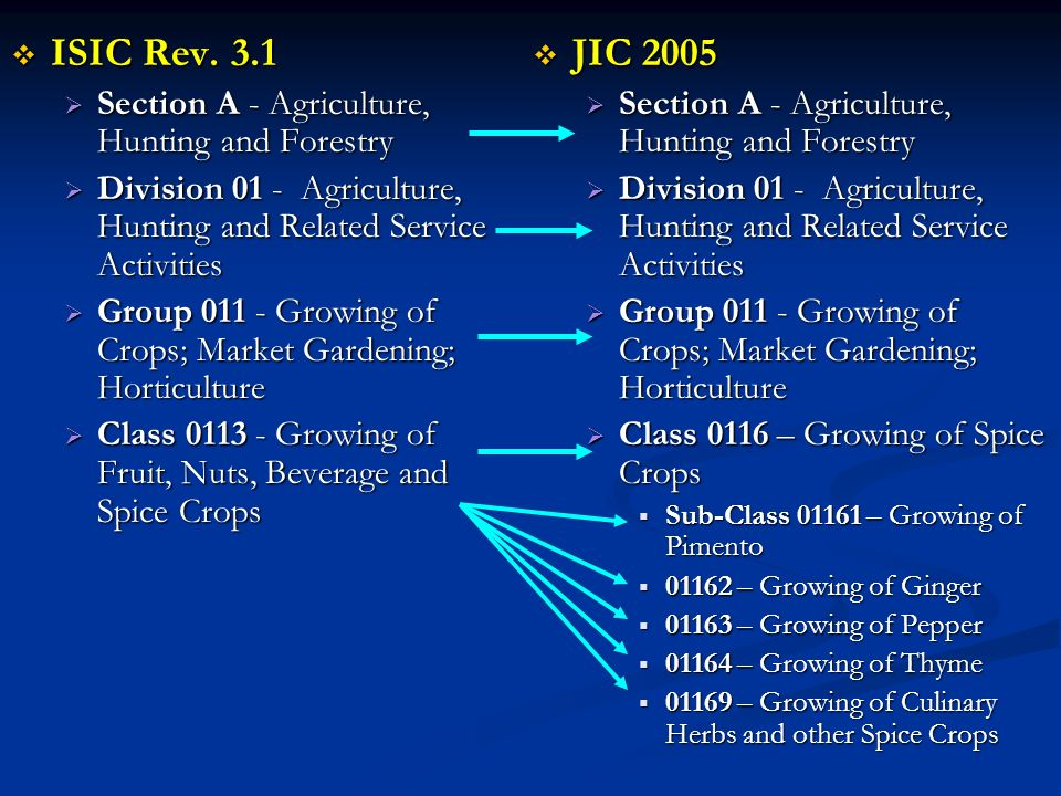 ISIC Rev. 3.1 ISIC Rev. 3.1 Section A - Agriculture, Hunting and Forestry Section A - Agriculture, Hunting and Forestry Division 01 - Agriculture, Hun