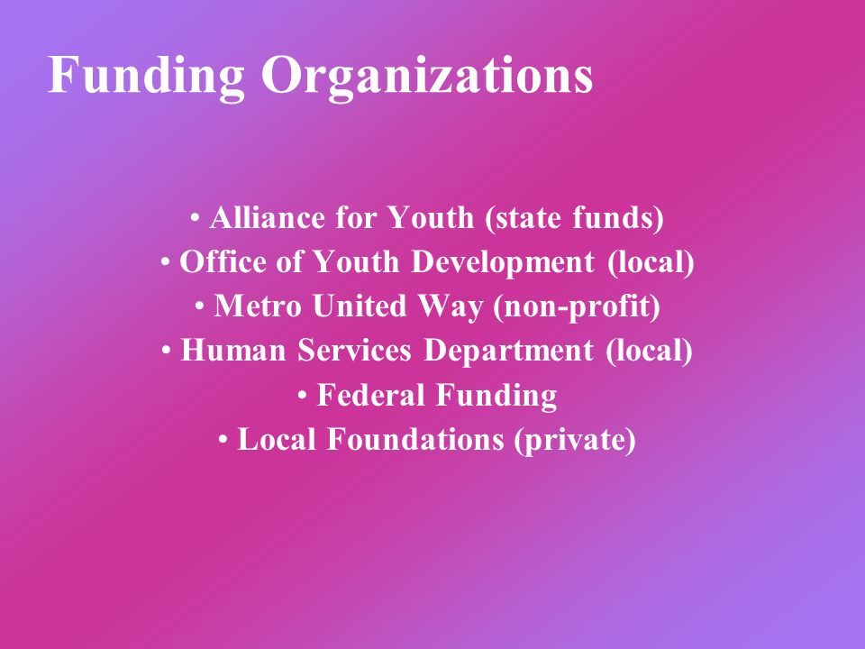 Funding Organizations Alliance for Youth (state funds) Office of Youth Development (local) Metro United Way (non-profit) Human Services Department (lo