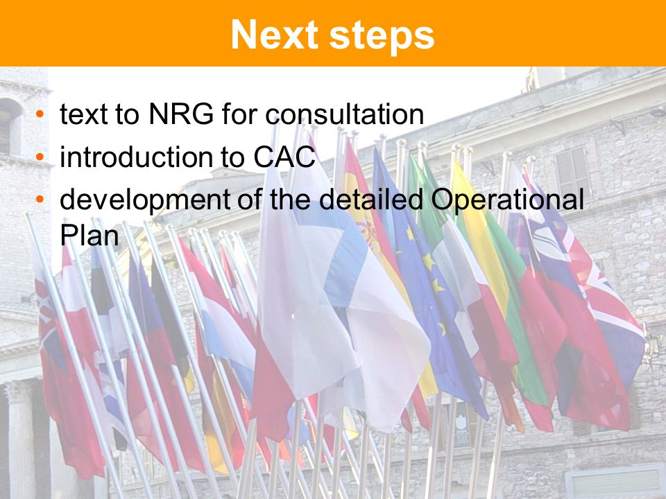 Next steps text to NRG for consultation introduction to CAC development of the detailed Operational Plan