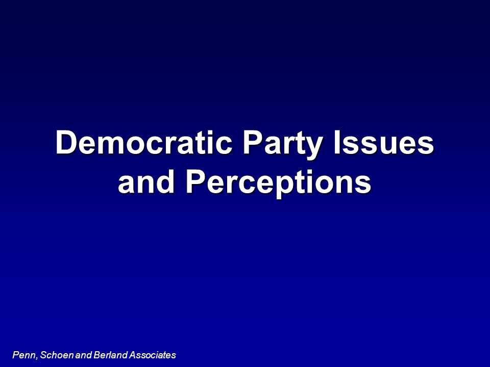Penn, Schoen and Berland Associates Democratic Party Issues and Perceptions