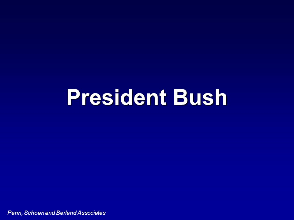 Penn, Schoen and Berland Associates President Bush