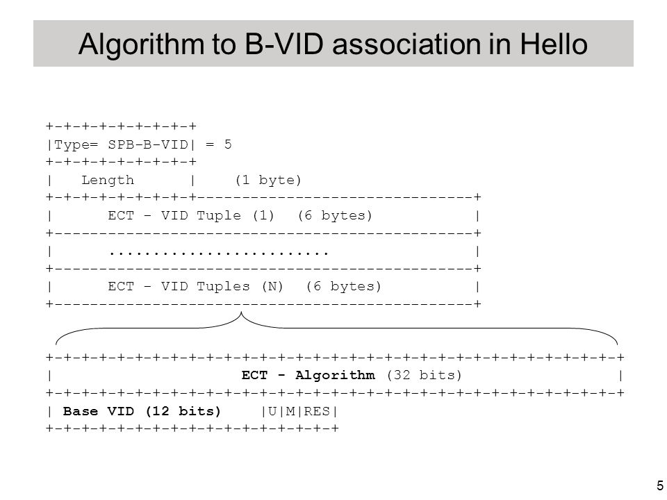 5 Algorithm to B-VID association in Hello +-+-+-+-+-+-+-+-+ |Type= SPB-B-VID| = 5 +-+-+-+-+-+-+-+-+ | Length | (1 byte) +-+-+-+-+-+-+-+-+-------------------------------+ | ECT - VID Tuple (1) (6 bytes) | +-----------------------------------------------+ |.........................