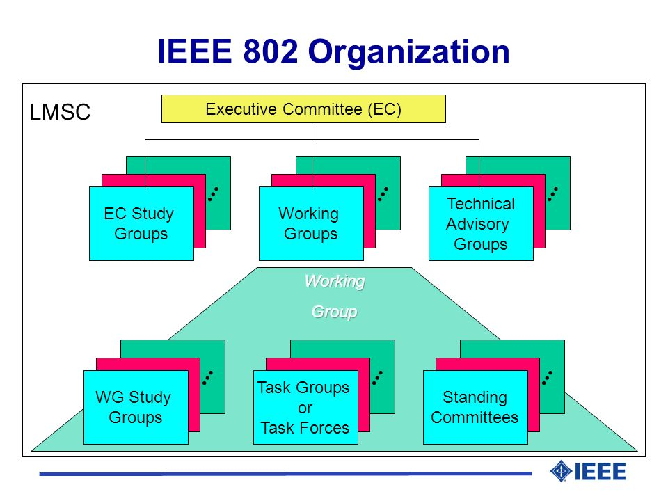 Executive Committee (EC) IEEE 802 Organization EC Study Groups LMSC Technical Advisory Groups Working Groups WG Study Groups Standing Committees Task Groups or Task Forces