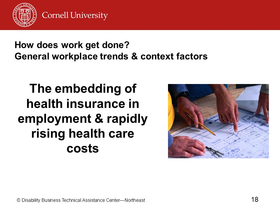 © Disability Business Technical Assistance CenterNortheast 18 How does work get done? General workplace trends & context factors The embedding of heal