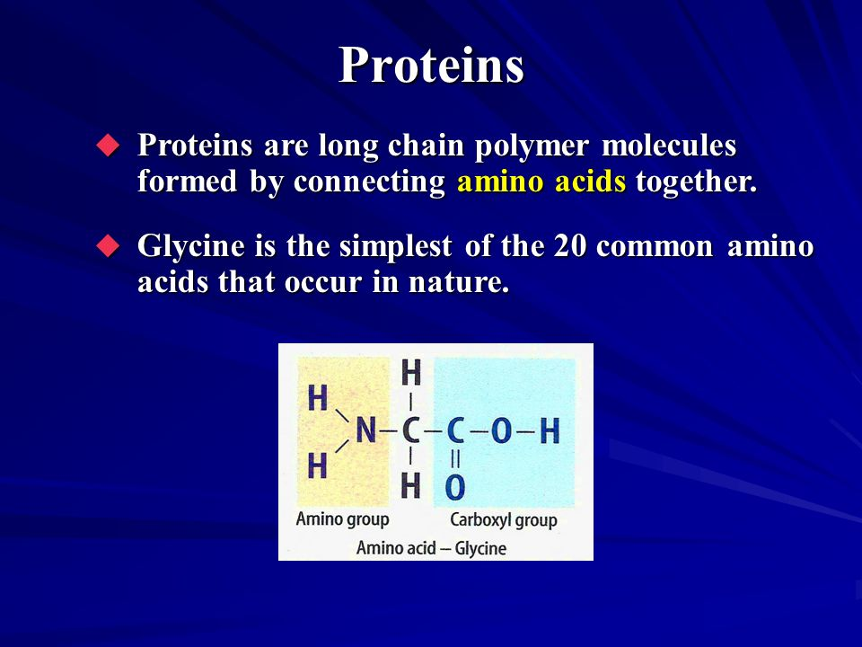 Proteins Proteins are long chain polymer molecules formed by connecting amino acids together. Proteins are long chain polymer molecules formed by conn