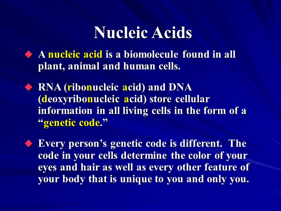 Nucleic Acids A nucleic acid is a biomolecule found in all plant, animal and human cells. A nucleic acid is a biomolecule found in all plant, animal a