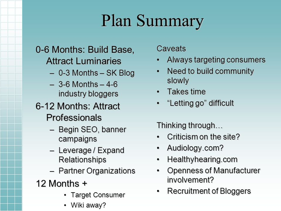 Plan Summary 0-6 Months: Build Base, Attract Luminaries –0-3 Months – SK Blog –3-6 Months – 4-6 industry bloggers 6-12 Months: Attract Professionals –Begin SEO, banner campaigns –Leverage / Expand Relationships –Partner Organizations 12 Months + Target ConsumerTarget Consumer Wiki away?Wiki away?Caveats Always targeting consumersAlways targeting consumers Need to build community slowlyNeed to build community slowly Takes timeTakes time Letting go difficultLetting go difficult Thinking through… Criticism on the site?Criticism on the site.