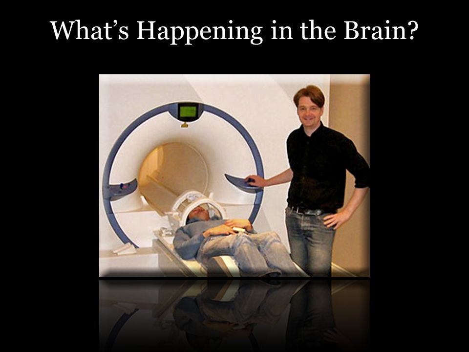 Whats Happening in the Brain?