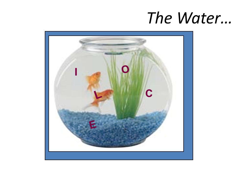 The Water… I C E L O