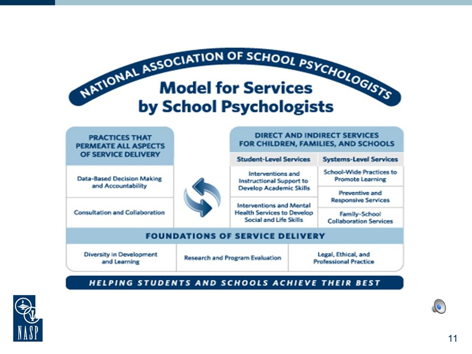 10 Model for Comprehensive and Integrated SP Services: Components Two major sections: Professional Practices – aligned with 10 domains of practice tha