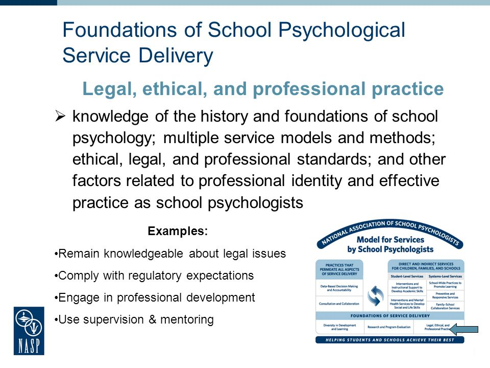 20 Foundations of School Psychological Service Delivery Research and program evaluation knowledge of research design, statistics, measurement, varied