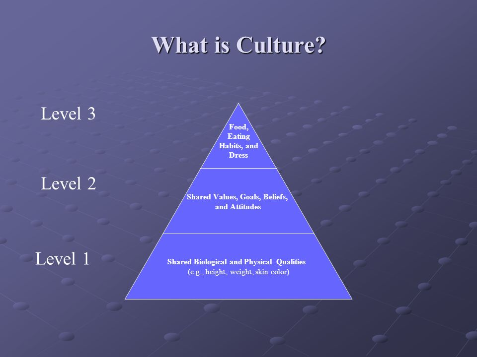 What is Culture? Food, Eating Habits, and Dress Shared Values, Goals, Beliefs, and Attitudes Shared Biological and Physical Qualities (e.g., height, w