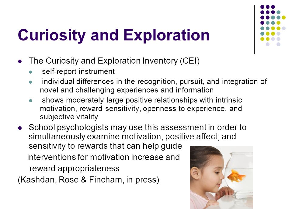 Curiosity and Exploration The Curiosity and Exploration Inventory (CEI) self-report instrument individual differences in the recognition, pursuit, and