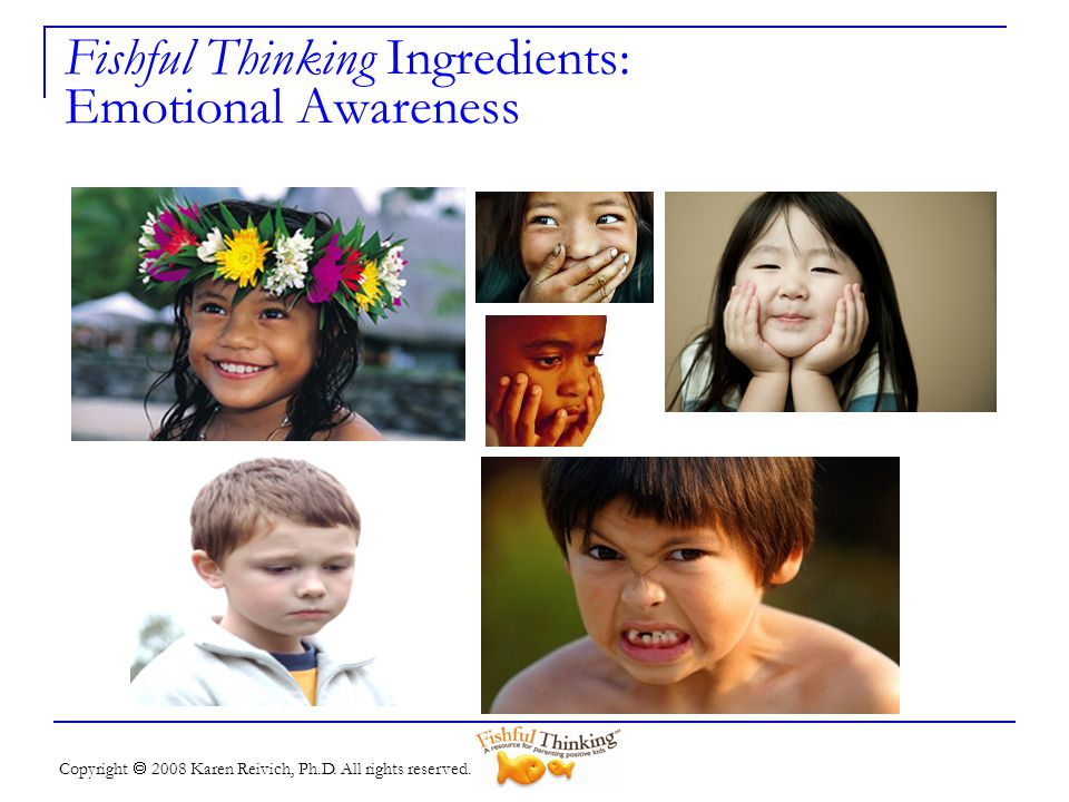 Copyright 2008 Karen Reivich, Ph.D. All rights reserved. Fishful Thinking Ingredients: Emotional Awareness