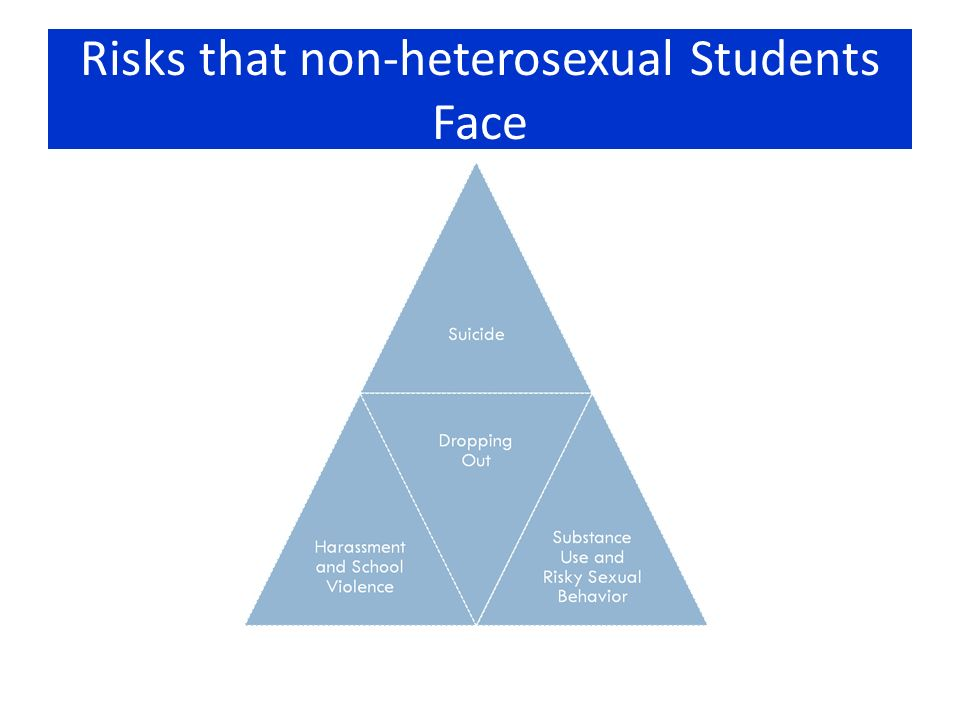 Risks that non-heterosexual Students Face Subject to harassment and violence at school More at risk for dropping out of school and getting kicked out