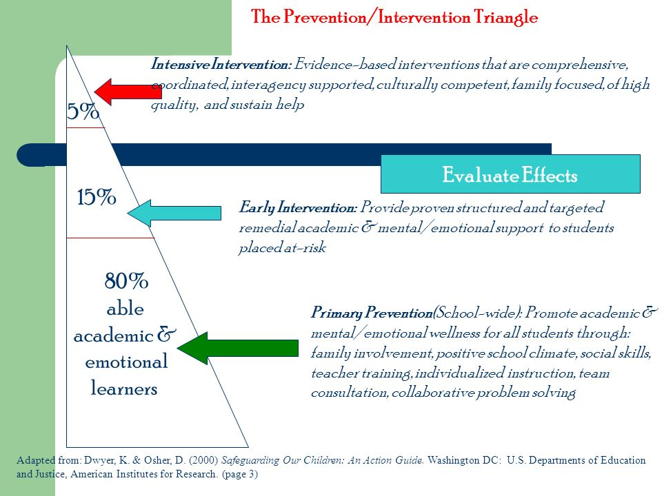 80% able academic & emotional learners The Prevention/Intervention Triangle Primary Prevention(School-wide): Promote academic & mental/emotional welln