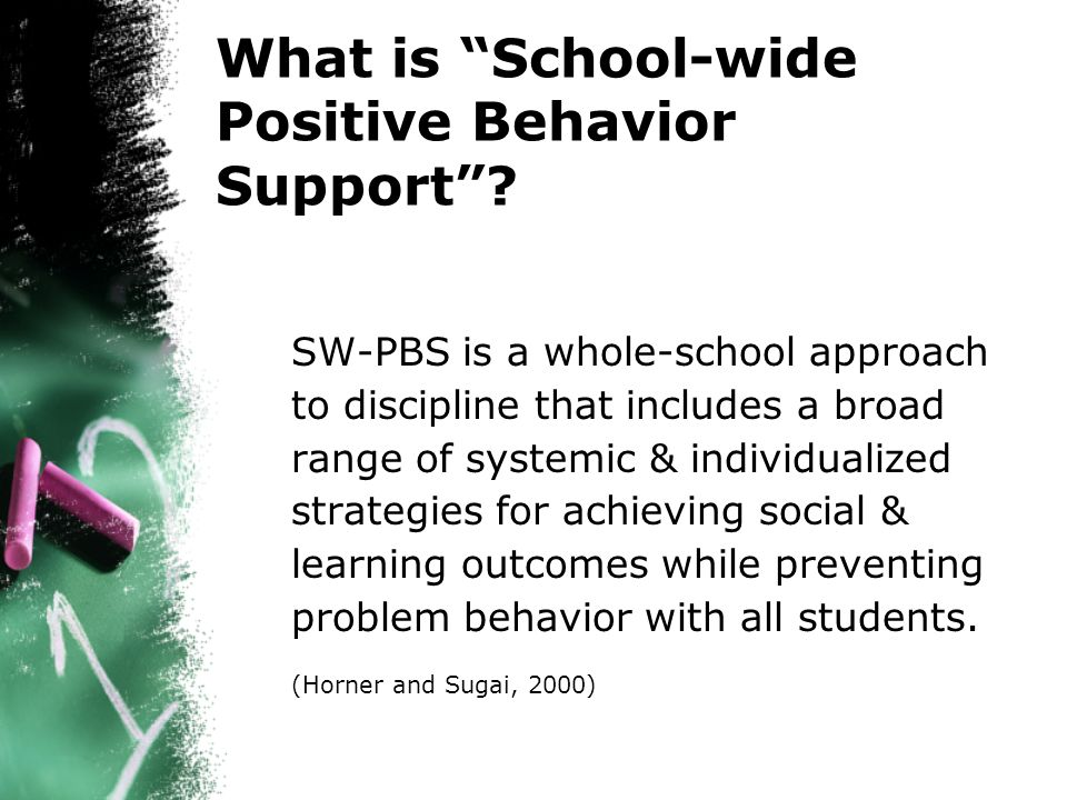 What is School-wide Positive Behavior Support.