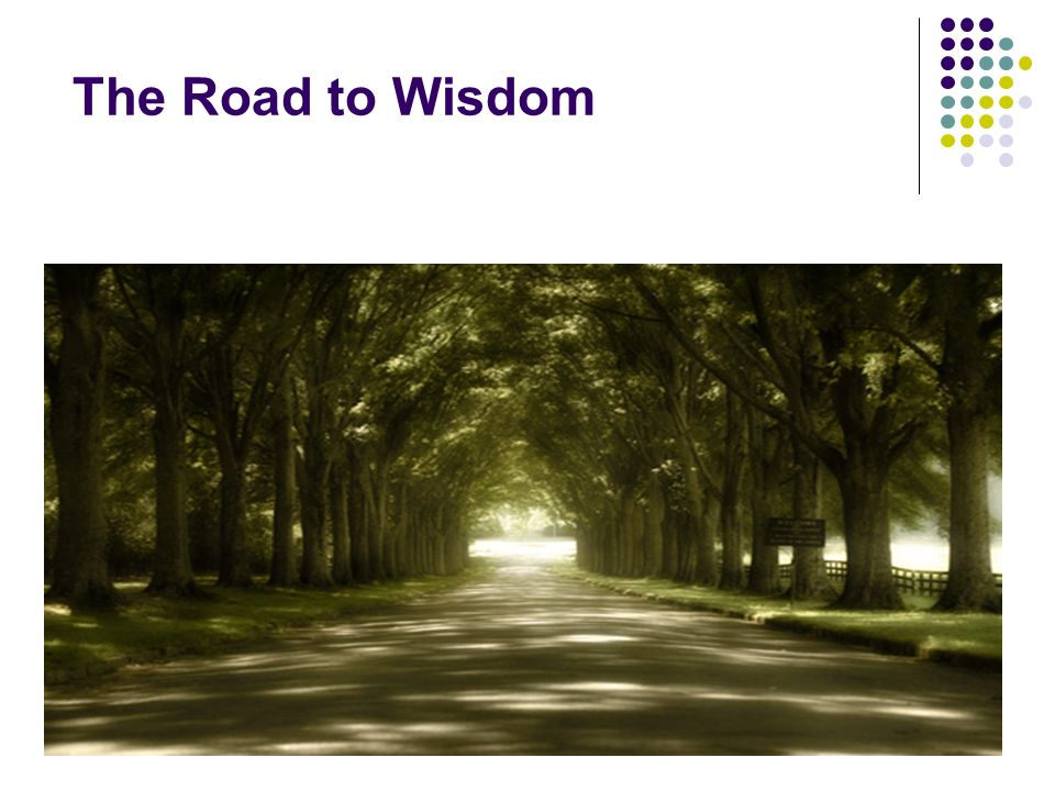 The Road to Wisdom
