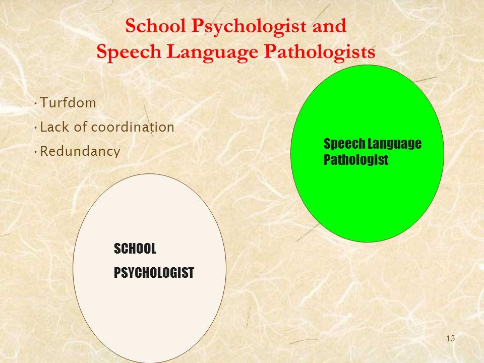 13 School Psychologist and Speech Language Pathologists Speech Language Pathologist SCHOOL PSYCHOLOGIST Turfdom Lack of coordination Redundancy