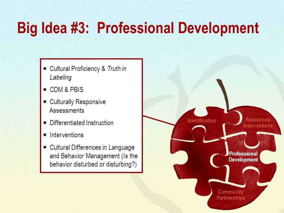 Big Idea #3: Professional Development Cultural Proficiency & Truth in Labeling CDM & PBIS Culturally Responsive Assessments Differentiated Instruction Interventions Cultural Differences in Language and Behavior Management (Is the behavior disturbed or disturbing ) Identification Resources/ Interventions Professional Development Community Partnerships