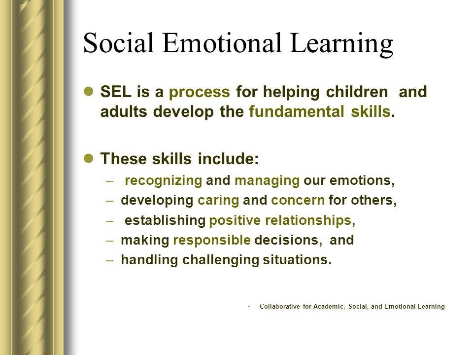 Social Emotional Learning SEL is a process for helping children and adults develop the fundamental skills. These skills include: – recognizing and man