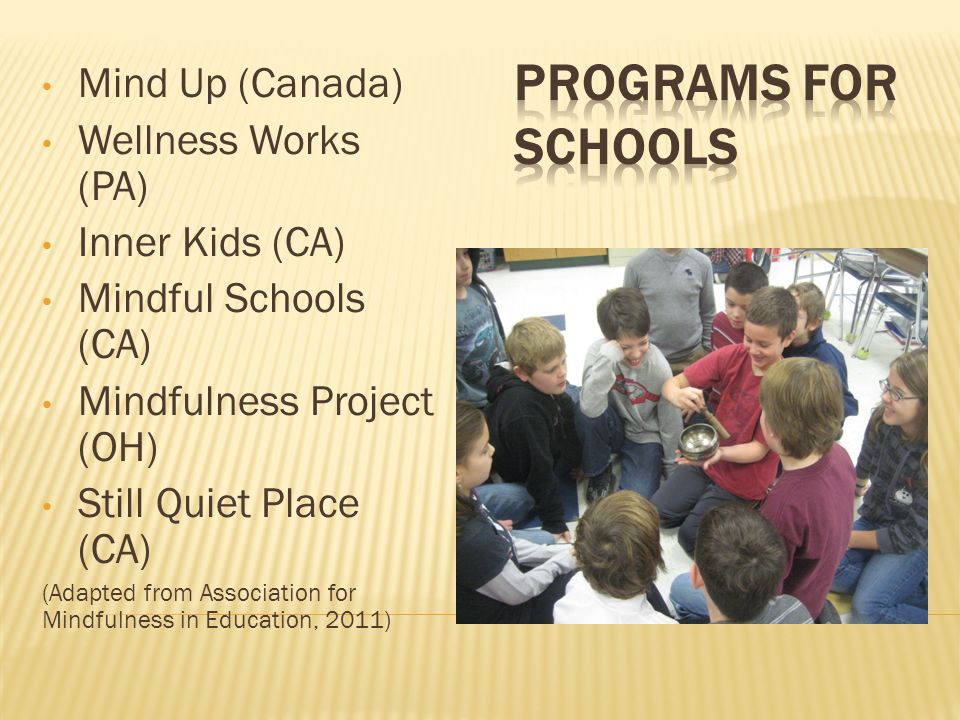 Mind Up (Canada) Wellness Works (PA) Inner Kids (CA) Mindful Schools (CA) Mindfulness Project (OH) Still Quiet Place (CA) (Adapted from Association fo