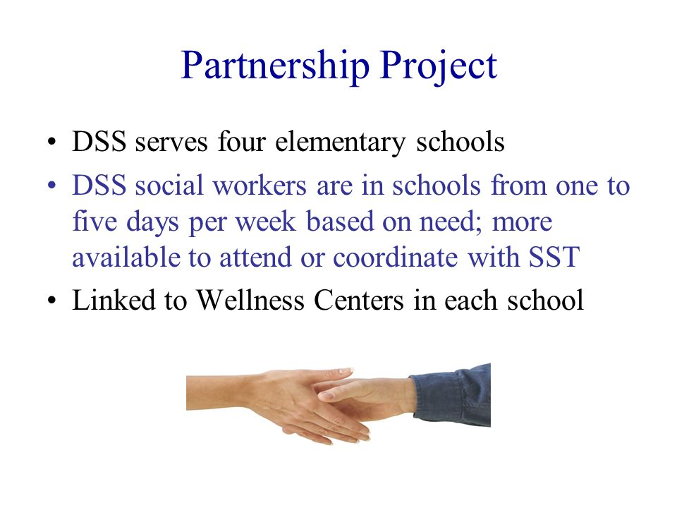 Partnership Project DSS serves four elementary schools DSS social workers are in schools from one to five days per week based on need; more available
