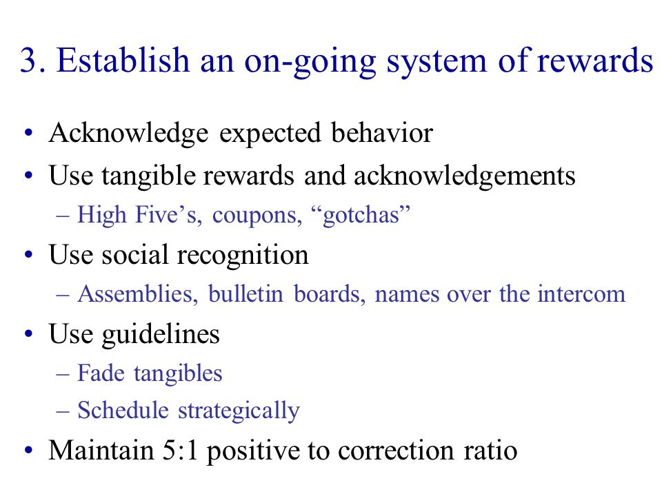3. Establish an on-going system of rewards Acknowledge expected behavior Use tangible rewards and acknowledgements –High Fives, coupons, gotchas Use s