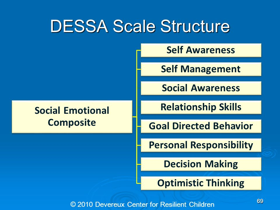 DESSA Scale Structure Social Emotional Composite Social Emotional Composite Eight Scales Eight Scales Self Awareness Self Awareness Self-Management Se