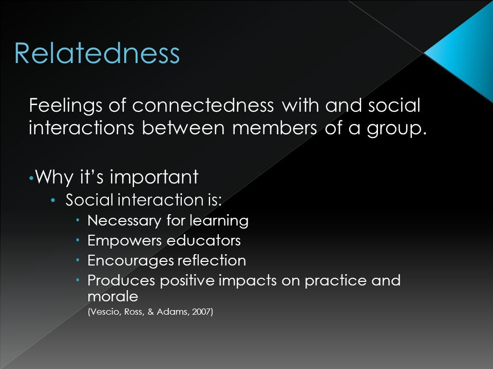 Feelings of connectedness with and social interactions between members of a group.