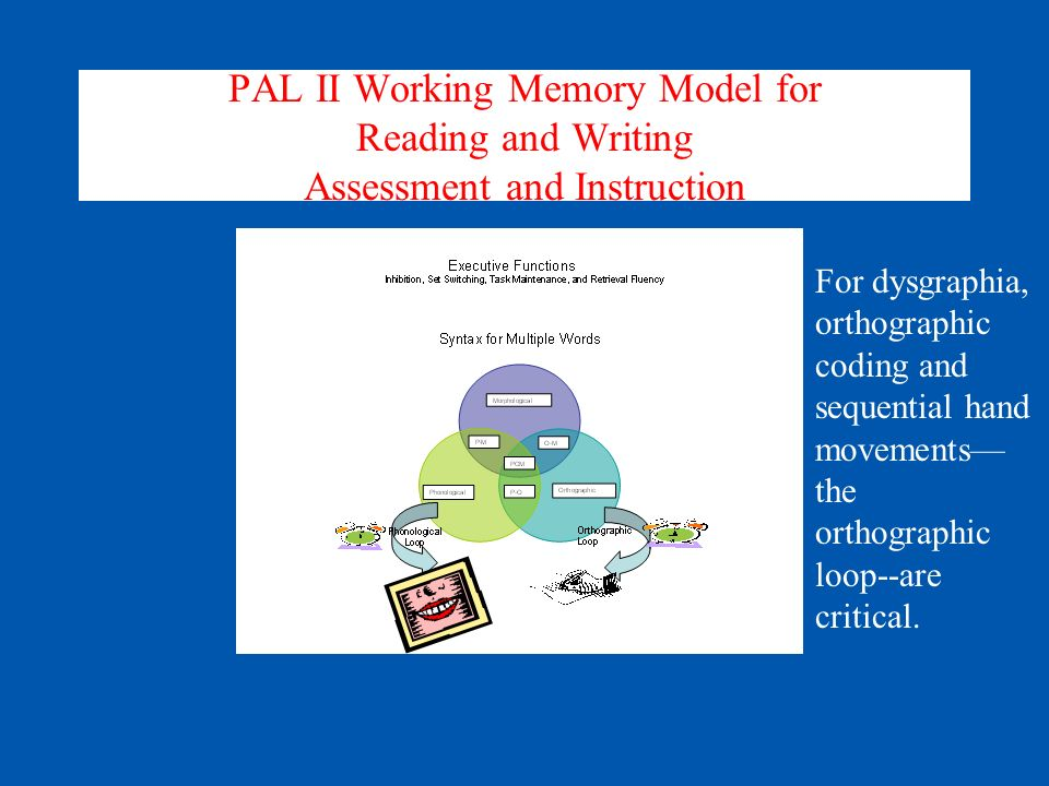 Modeling Phonological Core Deficit within Working Memory Word Form Storage (phonological*, orthographic*, morphological*) Phonological Loop (time-sensitive coordination of phonological codes) [RAN]* Executive Functions for phonological processes (Inhibition and Supervisory Attention* [RAS switching attention]) Berninger et al.