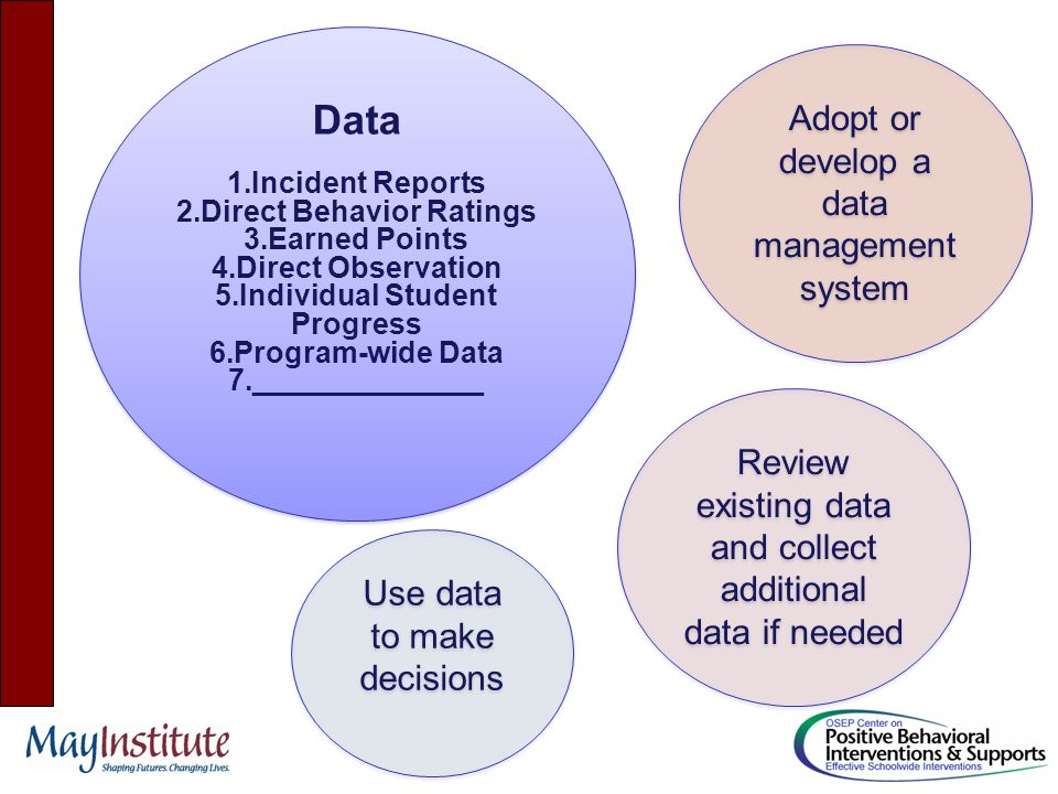 Systems 1.Team & Coaches (system-wide) (Team or classwide) 2.Continuous PD 3.Data-based decision making 4.Monitoring and evaluation fidelity 5.Program evaluation and continuous improvement Systems 1.Team & Coaches (system-wide) (Team or classwide) 2.Continuous PD 3.Data-based decision making 4.Monitoring and evaluation fidelity 5.Program evaluation and continuous improvement