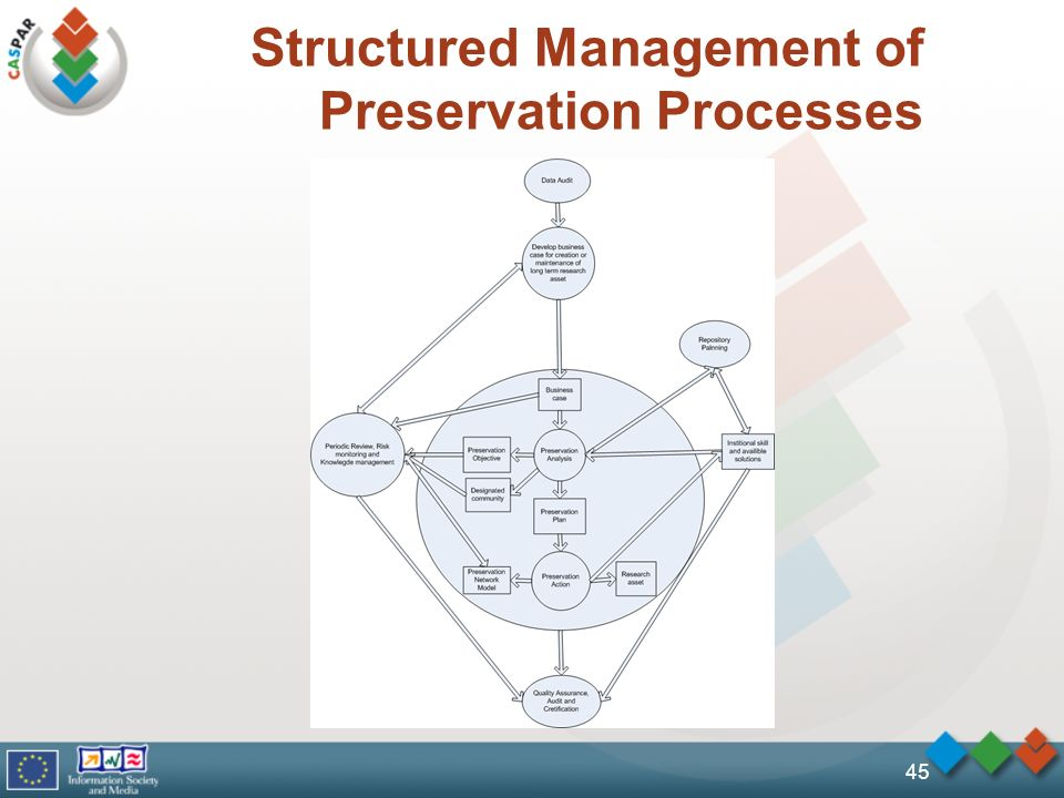 Structured Management of Preservation Processes 45
