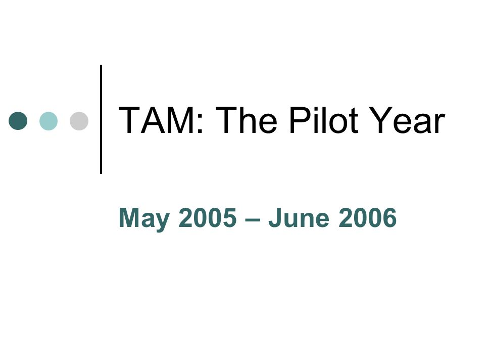 TAM: The Pilot Year May 2005 – June 2006