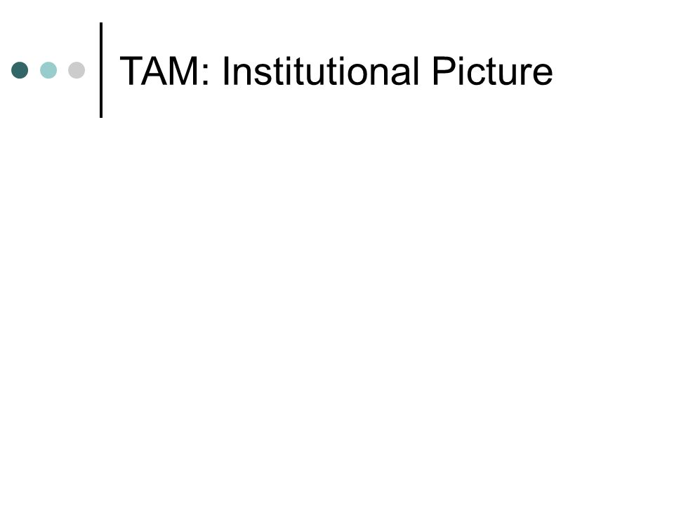 TAM: Institutional Picture