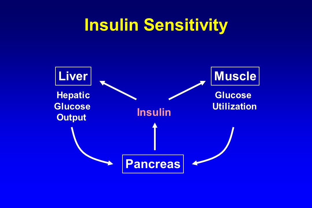 Insulin Sensitivity Insulin LiverMuscle Pancreas Hepatic Glucose Output Glucose Utilization