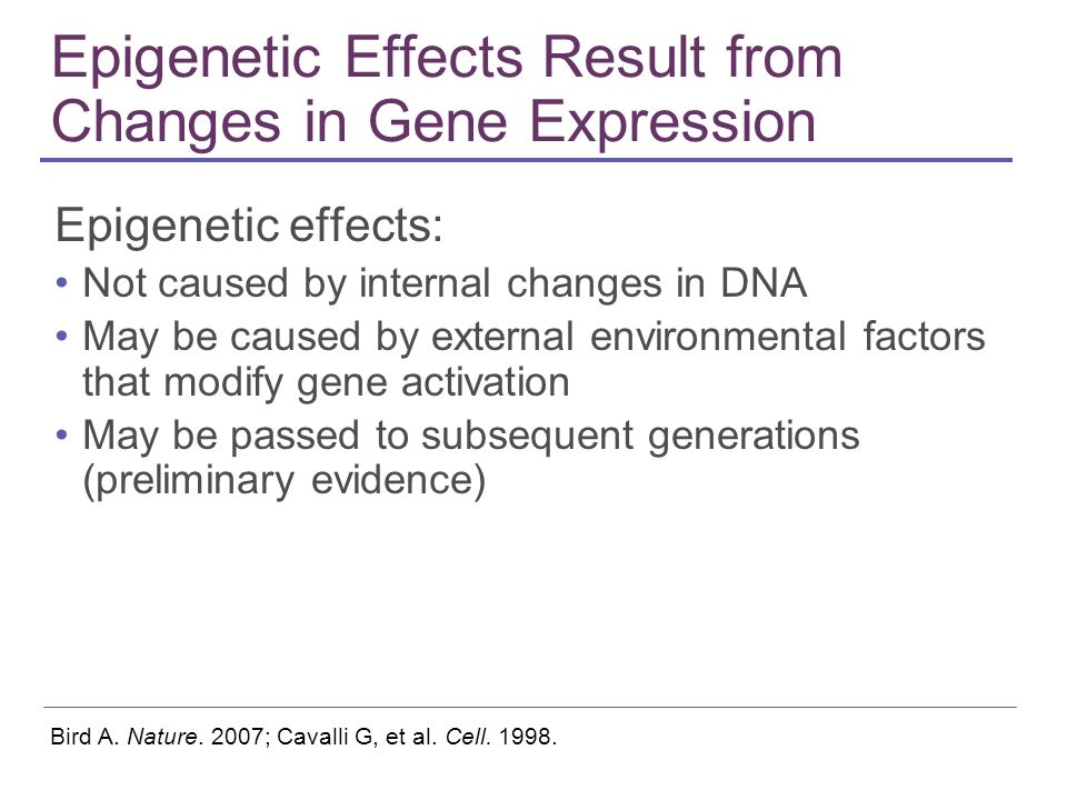 Epigenetic Effects Result from Changes in Gene Expression Epigenetic effects: Not caused by internal changes in DNA May be caused by external environm
