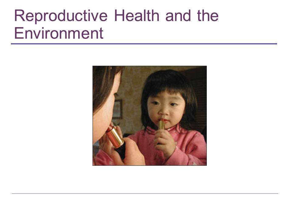 REH Partnerships Commonweal RHTP PPFA Womens Health and Environment Initiative (WHEI) Program on Reproductive Health and the Environment (UCSF) Breast Cancer Fund Science Communications Network