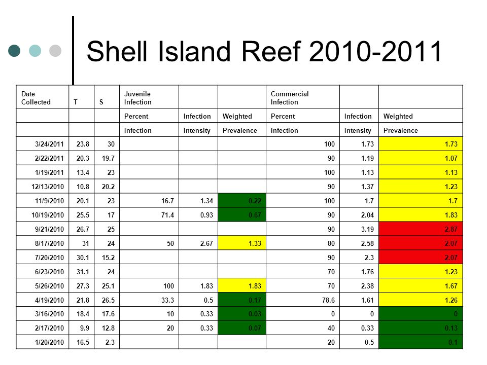 Shell Island Reef 2010-2011 Date CollectedTS Juvenile Infection Commercial Infection PercentInfectionWeightedPercentInfectionWeighted InfectionIntensi