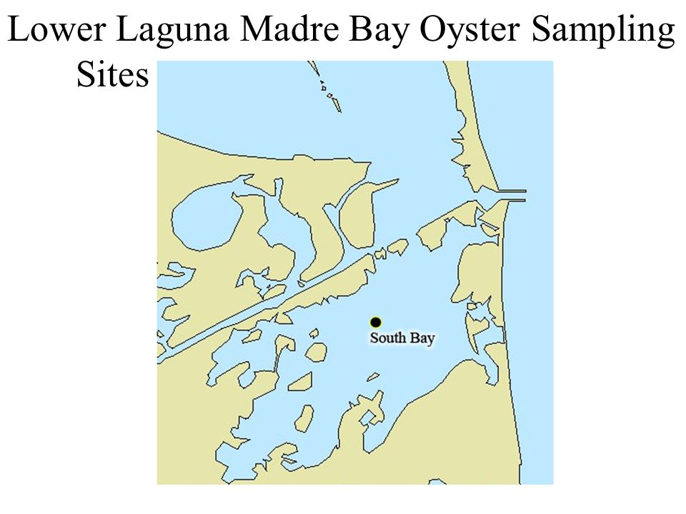 Lower Laguna Madre Bay Oyster Sampling Sites