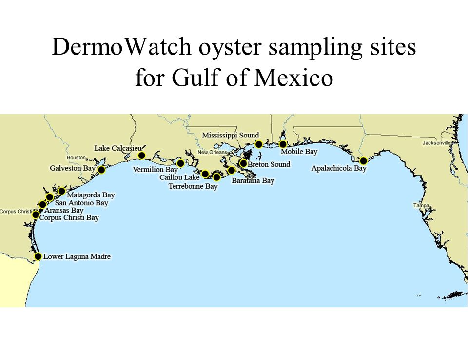 Aransas Bay Oyster Sampling Sites